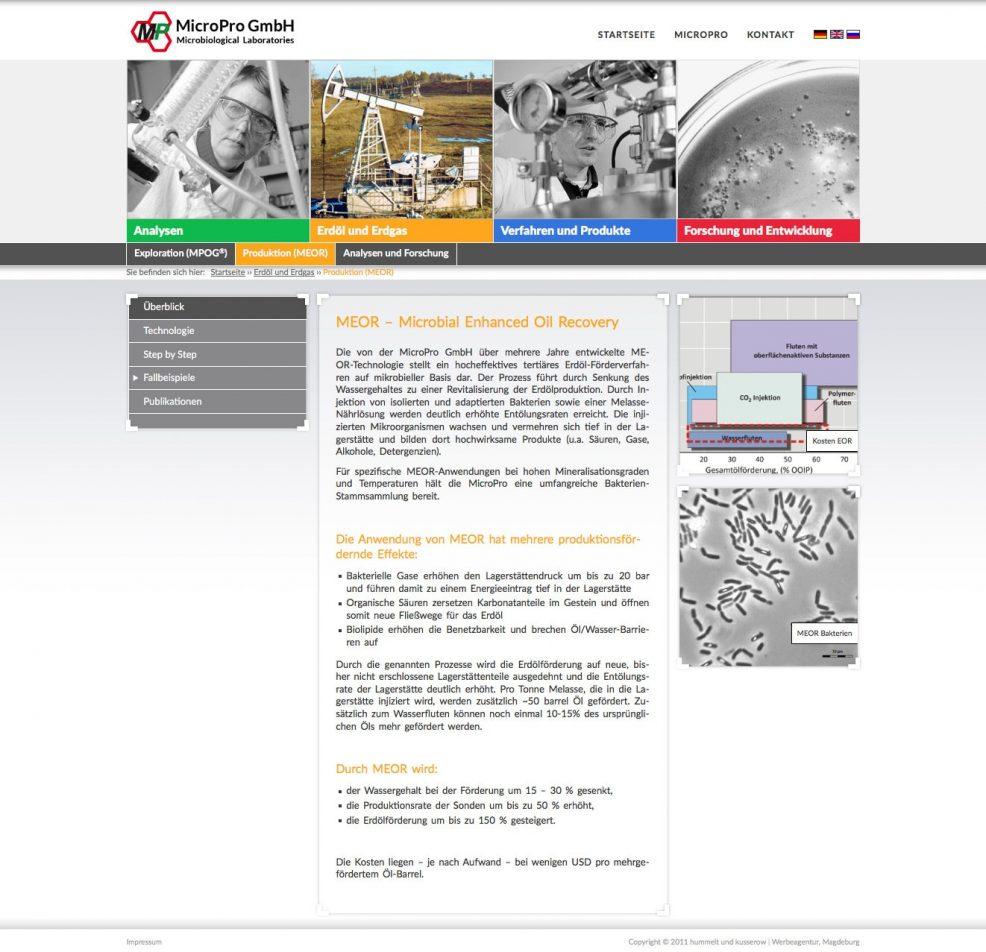 Webdesign und Programmierung für  MicroPro GmbH