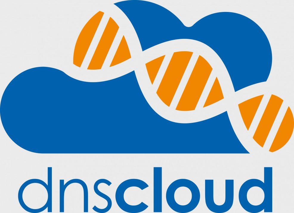 Logoentwicklung für  dns Datentechnik, Netzwerk und Systemhaus GmbH
